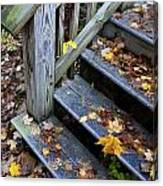 Fall Leaves On Steps Canvas Print