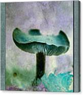Fall Mushroom 18 Canvas Print