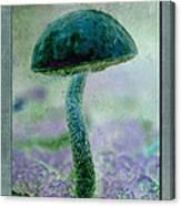 Fall Mushroom 19 Canvas Print