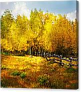 Fall Near Lake City Canvas Print