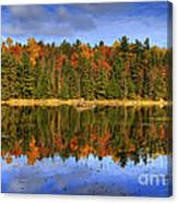 Fall.. Canvas Print