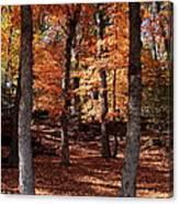 Fall On A Stump Canvas Print