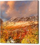 Fall On Display Canvas Print