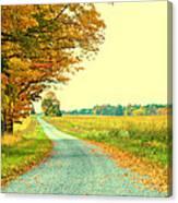 Fall Path Canvas Print