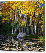 Fall Pond In Mammoth Canvas Print