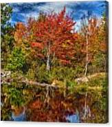 Fall Reflections In Maine Img 6312 Canvas Print