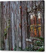 Fall Reflections On Weathered Glass Canvas Print