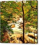 Fall River Running Canvas Print