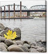 Fall Season Along Portland Willamette River By Marina Canvas Print