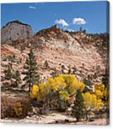 Fall Season At Zion National Park Canvas Print