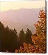 Fall Smoky Mountains Canvas Print