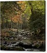 Fall Stream Cades Cove Gsmnp Canvas Print