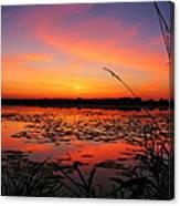 Fall Sunset In The Mead Wildlife Area Canvas Print