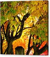 Fall Trees On A Country Road 3 Canvas Print