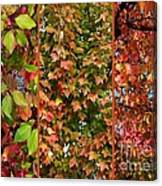 Fall Trio Collage Canvas Print