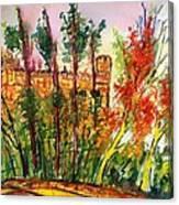 Fall2014-3 Canvas Print