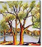Fall2014-7 Canvas Print
