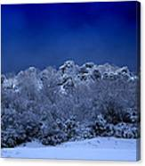 Fallen Angel Of Winter Canvas Print