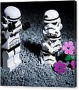 Fallen Friends Canvas Print