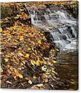 Fallen Leaves At A Waterfall Canvas Print