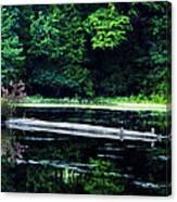 Fallen Log In A Lake Canvas Print