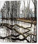 Fallen Tree Reflection Canvas Print