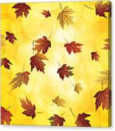 Falling Maple Leaves In Autumn Illustration Canvas Print