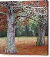 Falling Of The Leaves  Canvas Print
