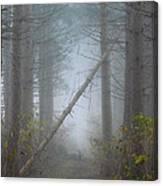 Falling Tree Canvas Print