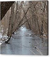 Falling Trees On A Frozen Canal Canvas Print