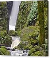 Falling Water Cuts Into Mount Tamalpais Canvas Print