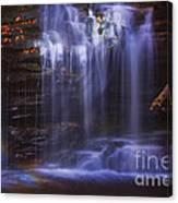 Falls And Log Canvas Print
