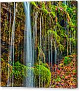 Falls And Moss Canvas Print
