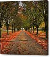 Fall's Driveway Canvas Print