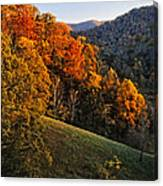 Fall's Mountainside Cascade Canvas Print