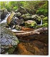 Falls On Blood Mountain Creek Canvas Print