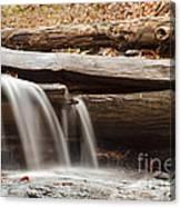 Falls Through A Tree Canvas Print