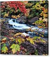 Falltime In Algonquin Canvas Print