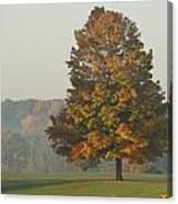 Falltime Canvas Print