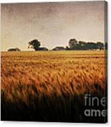 Family Farm Canvas Print