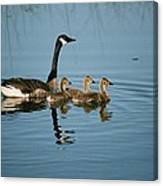 Family Outing Canvas Print
