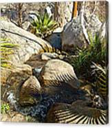 Fan Palm Leaves And Shadows Over Andreas Creek Rocks In Indian Canyons-ca Canvas Print