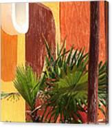 Fan Palm On Patio Canvas Print