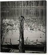 Fancher Davidge 1 Canvas Print