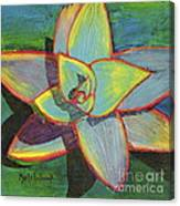 Fanciful Agave Canvas Print