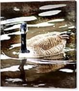 Fancy Goose Canvas Print