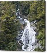 Fantail Falls Canvas Print