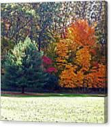 Fantastic Fall Canvas Print