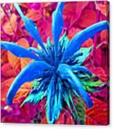 Fantasy Flower 1 Canvas Print