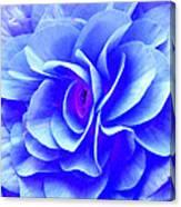 Fantasy Flower 10 Canvas Print